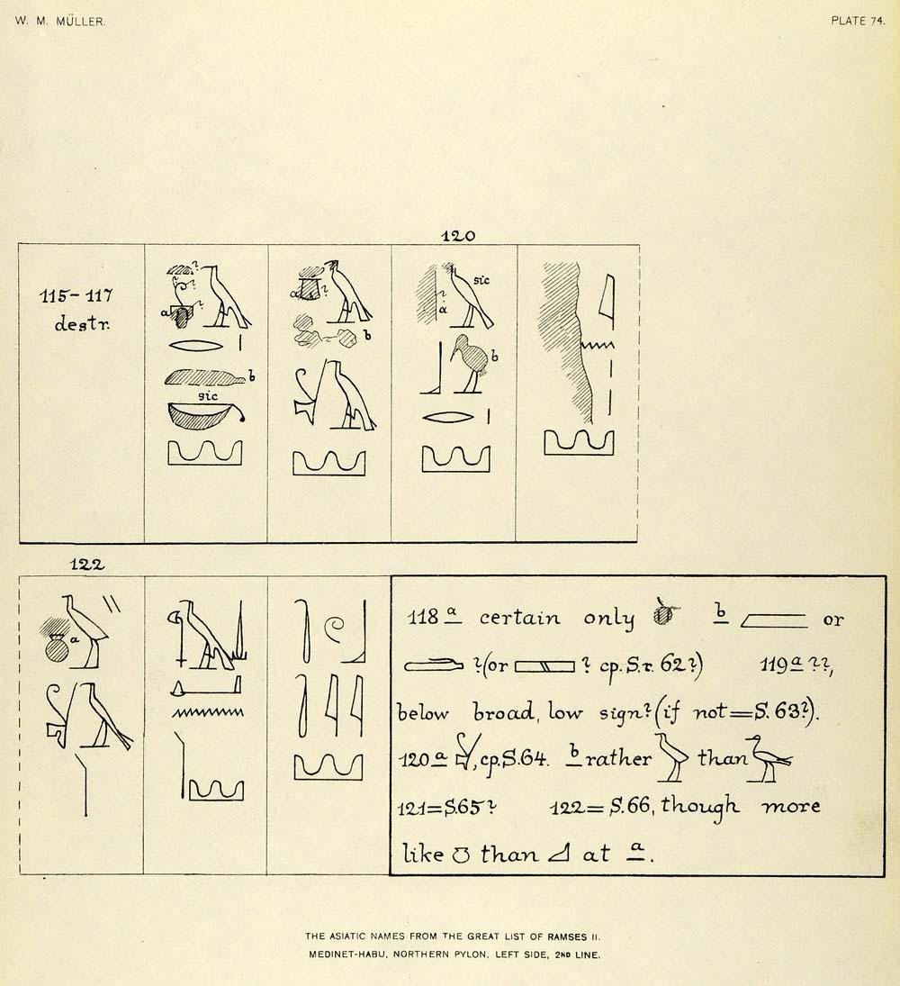 Egyptian bird hieroglyphics - photo#24