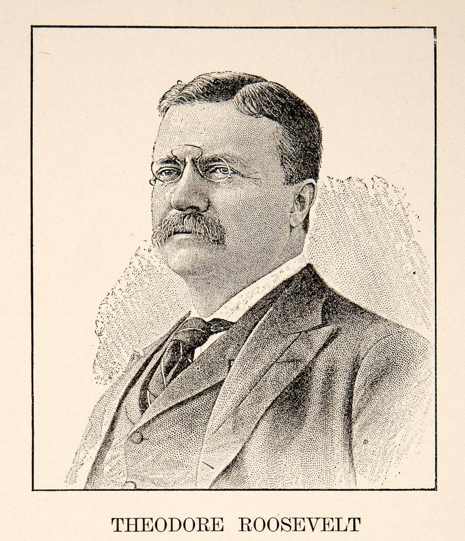 a biography of theodore roosevelt the twenty sixth president of the united states of america Theodore roosevelt - books on united states presidents did america's twenty-sixth president learn how to master the theodore roosevelt: an intimate biography.